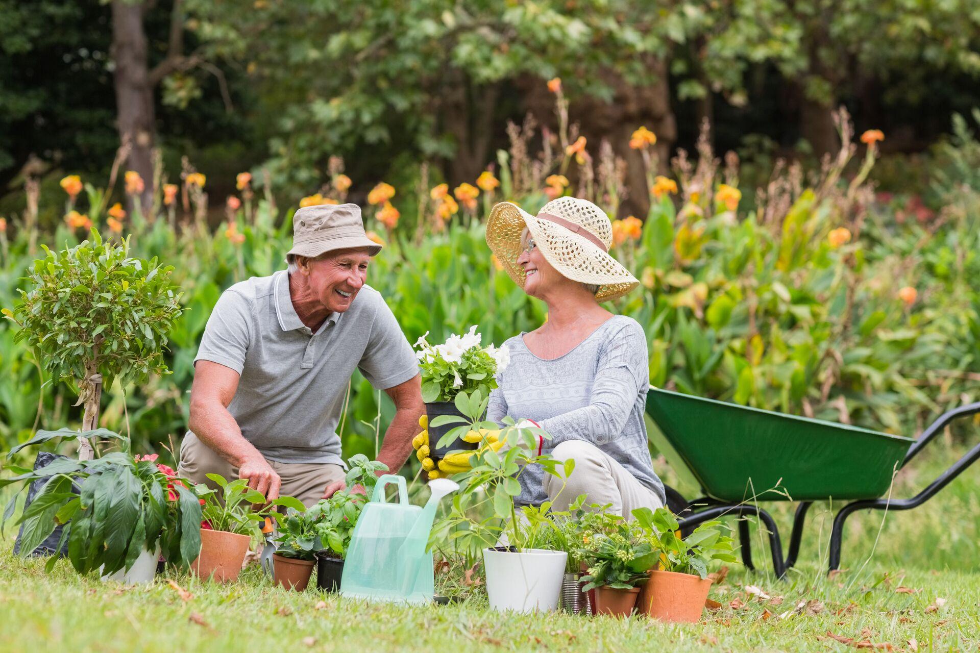 Two seniors gardening